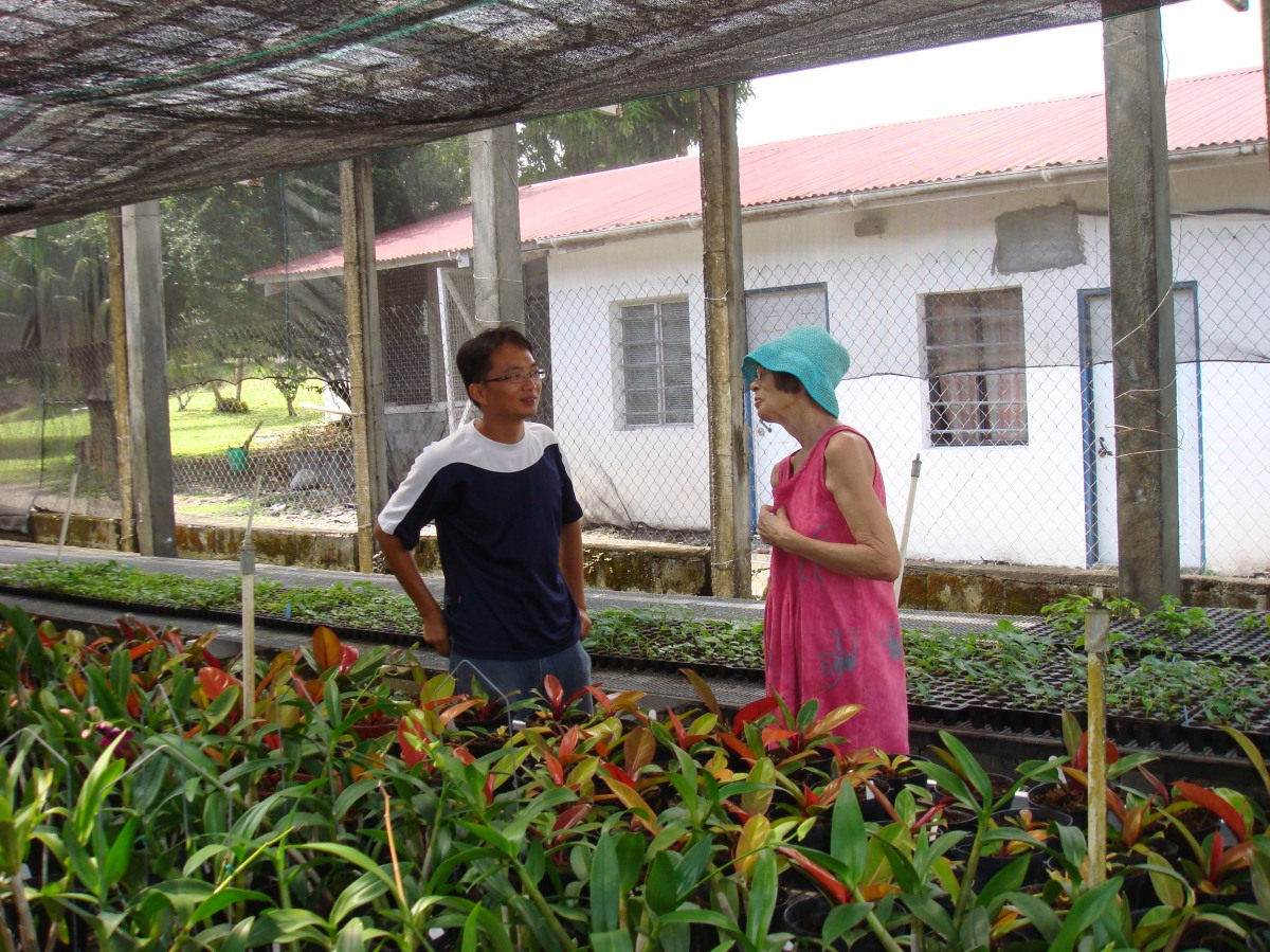 at Taiwanese agricultural mission at Orange Hill, St. Vincent in 2008